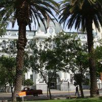 Banco Nación tras las palmeras / Lautaro, Байя-Бланка