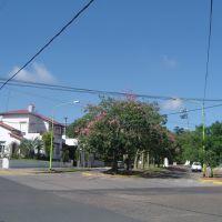 Boulevar Lavalle, Кампана