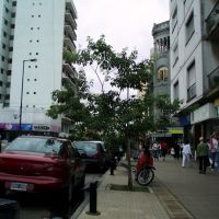 Apliacion de Calle 12, Ла-Плата