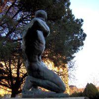 el arquero divino - troiano troiani, Ла-Плата