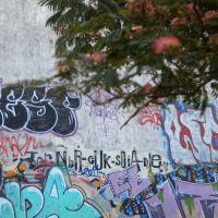 Graffitis, Мар-дель-Плата
