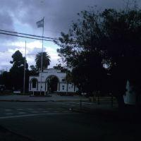 la plaza vista  desde calle murature, Пунта-Альта