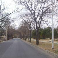 al lado del parque de la vida, Кордова