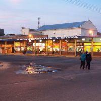Terminal, Гойя