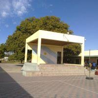 ESCENARIO ESC. PRIM. N°66 GRAL. JOSE DE SAN MARTIN - GOYA, CORRIENTES (ARGENTINA), Гойя