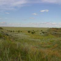 Vista desde los medanos hacia el Oeste, Женераль-Рока