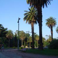 San Martin Park, Мендоза