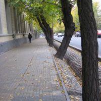 Calle con asequias en Mendoza, Мендоза