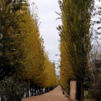 Parque Mendoza, Мендоза