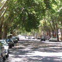 Arg_Mendoza 01, Мендоза