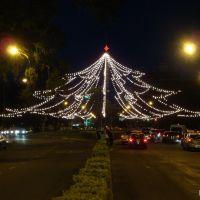 Arbol de luces que se arma para navidad en Rosario, Santa Fe, Argentina, Росарио
