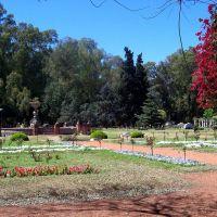 Rosedal (Rose Garden), Росарио