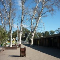Parque de diversiones, Rosario...., Росарио