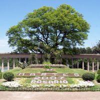 Calendario Floral (Flower Calendar), Росарио