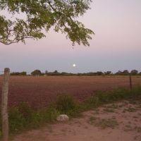 Amanecer de la luna, Пресиденсиа-Рокуэ-Сенз