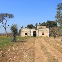 Masseria Nuova, Бискегли