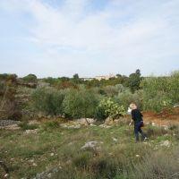 Areal: Masseria Storica Pilapalucci - 25.10.2011, Бискегли