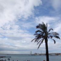 Scorcio del porto di Molfetta dalla Banchina San Domenico, Мольфетта