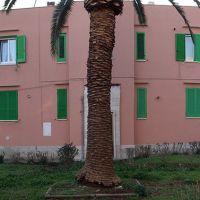 Molfetta, via Giovinazzo, Мольфетта