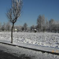 Castelnovo, Виченца