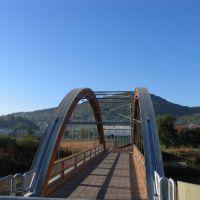 il ponte del gemellaggio, Виченца