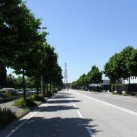 Viale Regione del Veneto ( Zona Industriale ), Падуя
