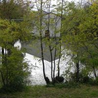 Alluvione del 2 -  11 - 2010, Падуя
