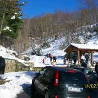 Quanta neve..., Косенца