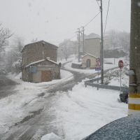 Neve - Ingresso di Platania, Косенца