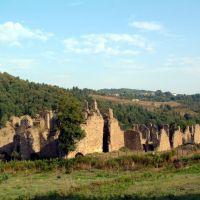 Ruderi dell abbazia di Corazzo, Косенца