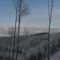 SoveriaCarlopoli, Косенца