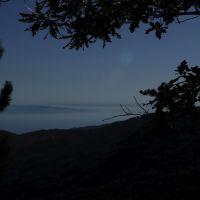 il golfo e la Sicilia, Косенца