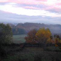 carricella, Косенца