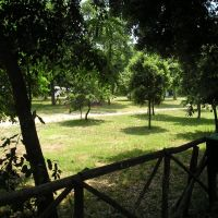 NA - Area di sosta camper Solfatara, Поццуоли