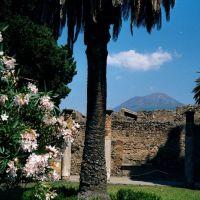 Pompeii 8, Торре-Аннунциата