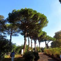 Pompei, Торре-Аннунциата