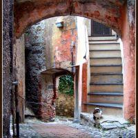 scala custodita, Генуя