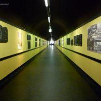 El pasillo infiniiiiiiiiiiito del elevador, Генуя