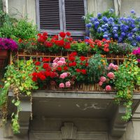 I fiori sul balcone., Ла-Специя