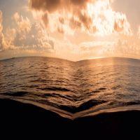 Il libro del Mare, Савона
