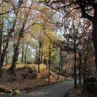 autunno ai Giardini Estensi, Варезе