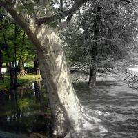 Parco Sempione @ Milano, Милан