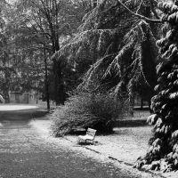 """Il parco della """"Villa"""", Монца"""