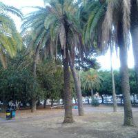 Piazza Pittore Renda, Алькамо