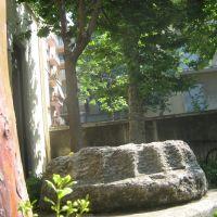 Ingresso alla facoltà di Scienze Naturali - Via Androne, Катания