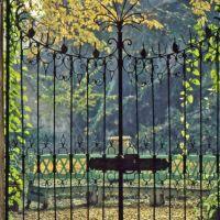 Il giardino di Palazzo Gazzelli, Асти