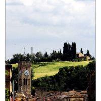 Poggibonsis Postcard, Виареджио