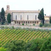 Poggibonsi- San Lucchese visto dalla Fortezza, Виареджио