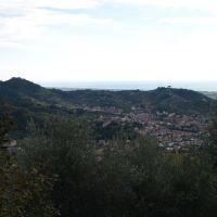 Bonascola, Каррара