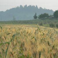 Tuscany, Пистойя
